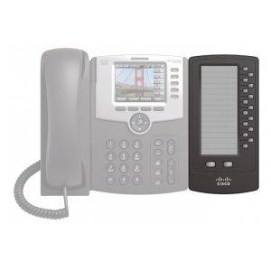 Cisco SPA500DS